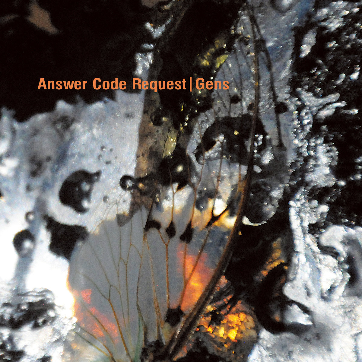 Cover art for Answer Code Request's Gens